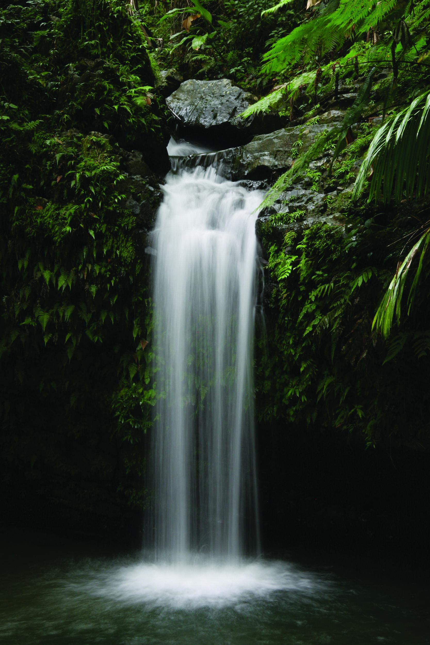 El Yunque, Puerto Rico. Puerto Rico itinerary: Things to do in Old San Juan