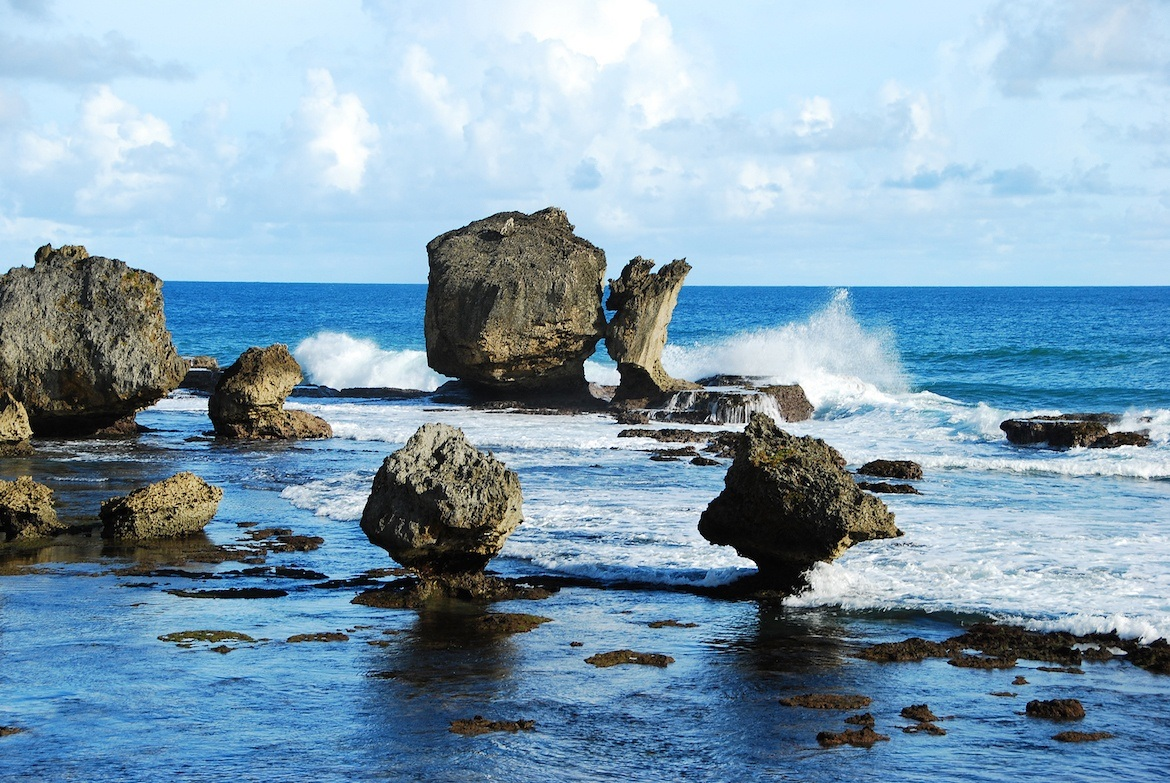 The coast in Barbados