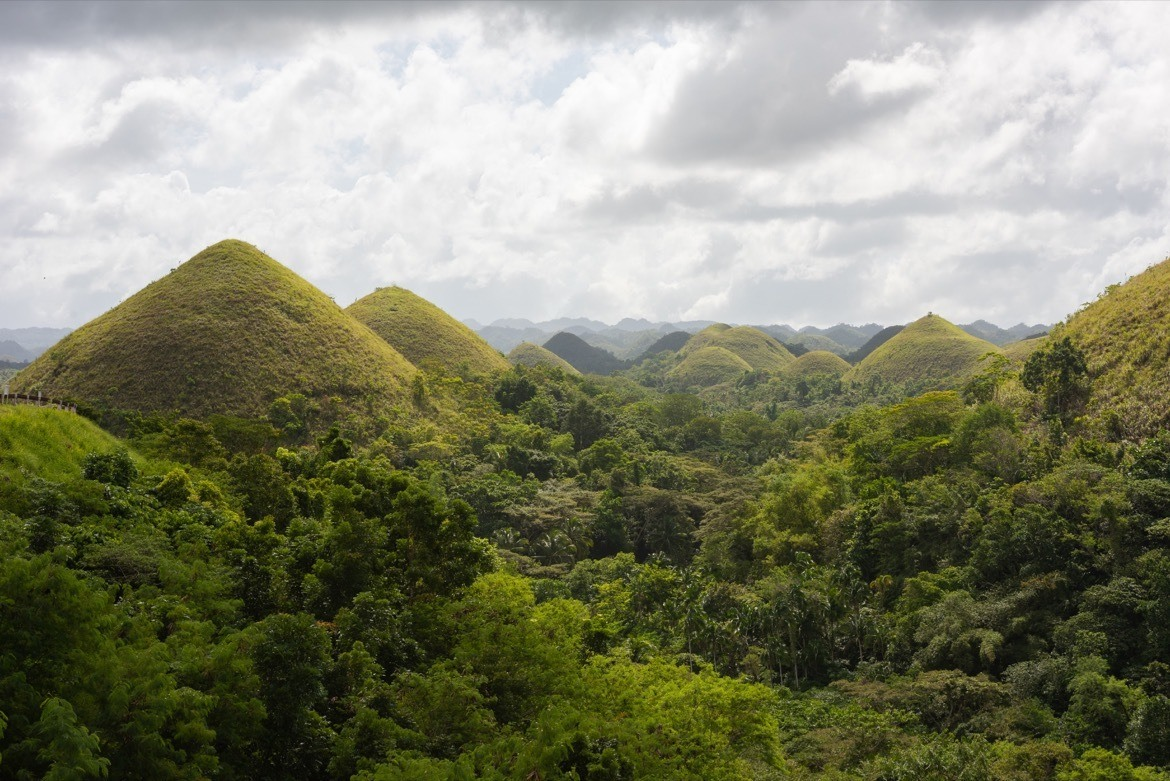 The Chocolate Hills are one of the top Bohol attractions