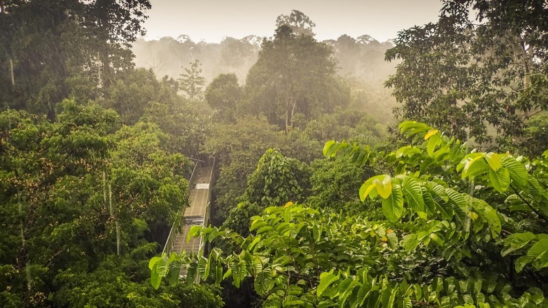 Borneo itinerary