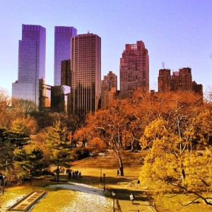 #7: Central Park, New York City. @catkorn