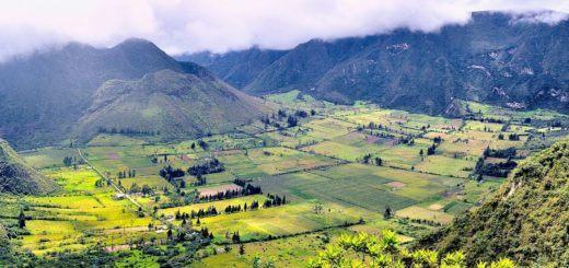 The Puluhalua geobotanical reserve in Ecuador