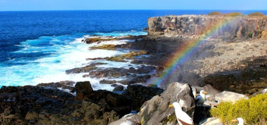 Espanola. galapagos islands rainbow
