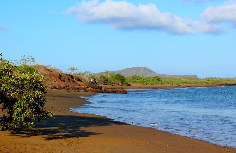 Playa Verde on Floreana island