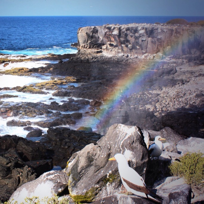 galapagos-espanola-scenery