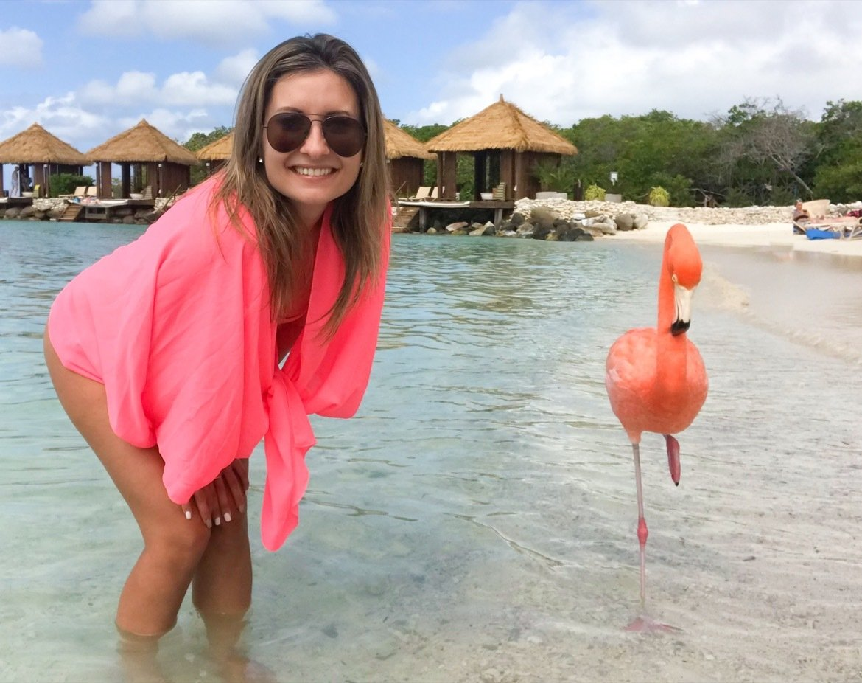Aruba flamingos on Renaissance Private Island