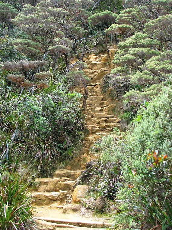 malaysia_kinabalu_stairs