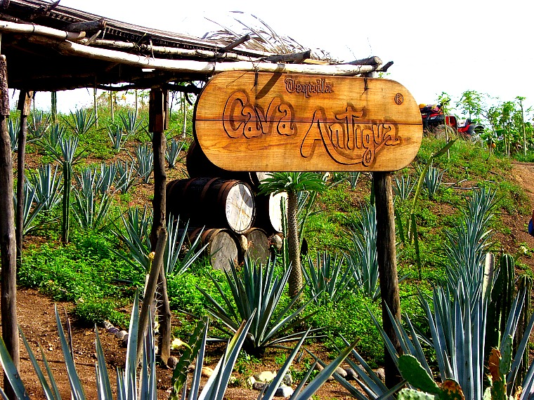 Tequila tasting at Cava Antigua near Puerto Vallarta, Mexico