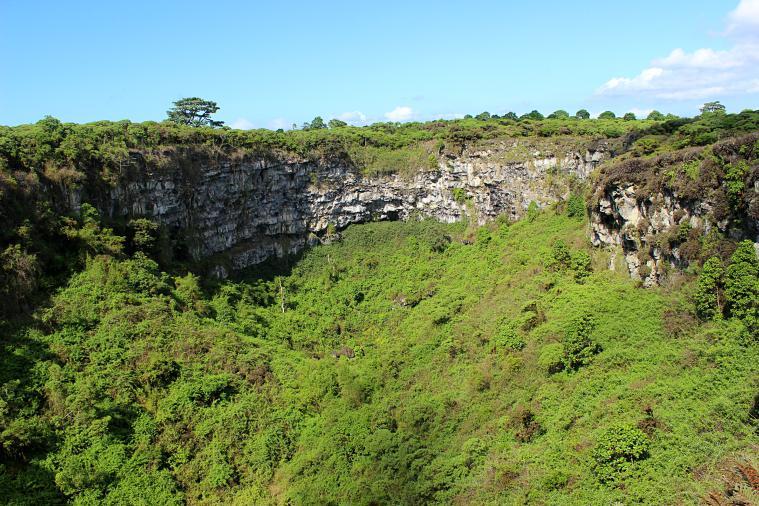 Santa Cruz Highlands in the Galapagos Islands