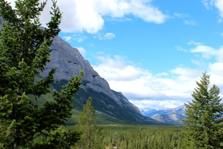 Looking out at the valley below Mount Rundle. banff alberta legacy trail