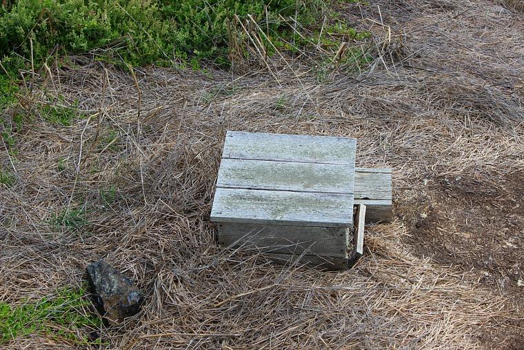 australia-phillip-island-breeding-boxes