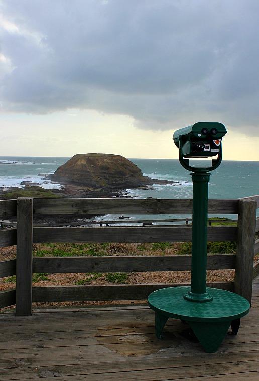 australia-phillip-island-noobies-lookout