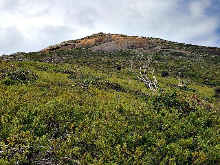 Mt Oberon