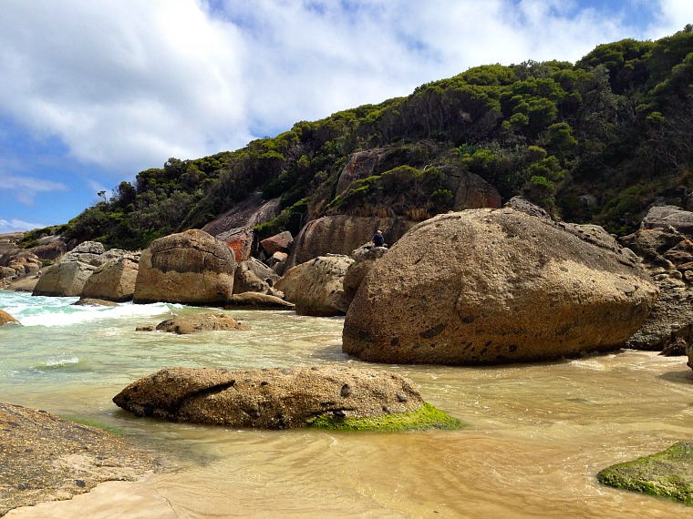 best day trips from melbourne, australia