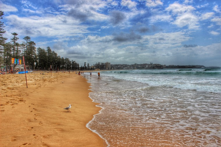 Why Manly Beach Is One Of The Best Beaches In Sydney