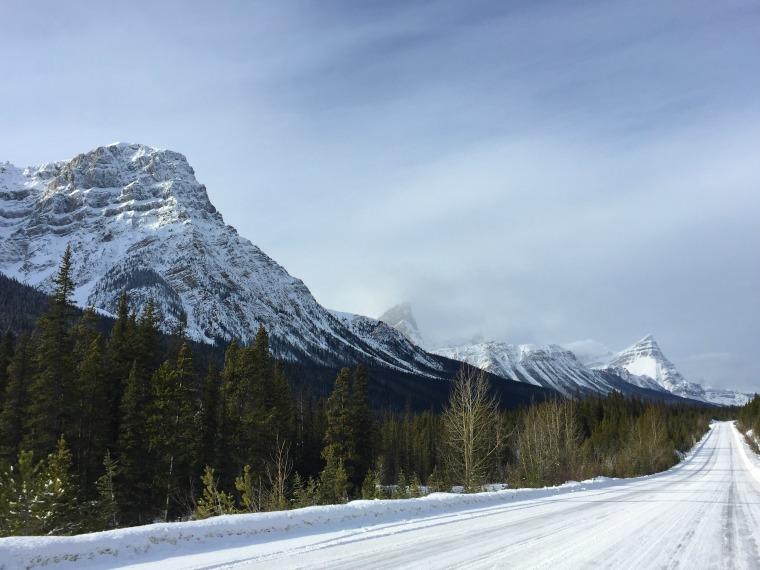 jasper alberta icefields parkway