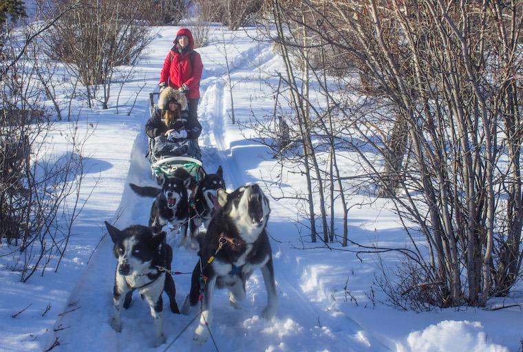 Canada-Yukon-Dog-Mushing-29