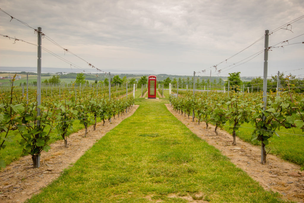 Wolfville, Nova Scotia wineries