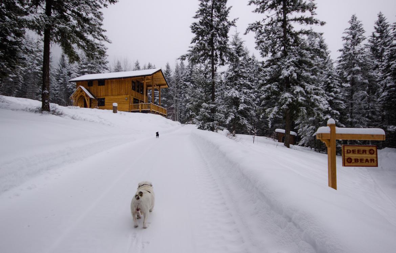 Winter in Golden, B.C., Canada