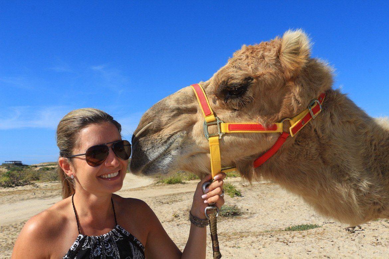 Outback camel safari in Baja Mexico