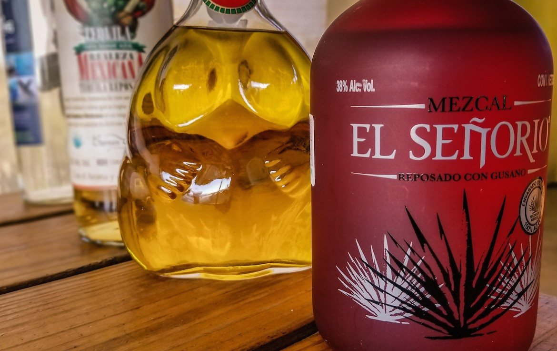 Outback camel safari in Baja Mexico tequila