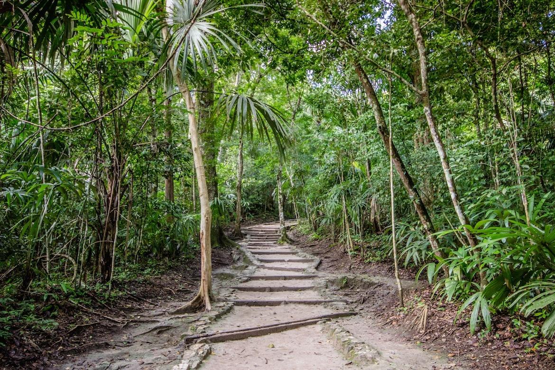 Tikal, Guatemala day trip