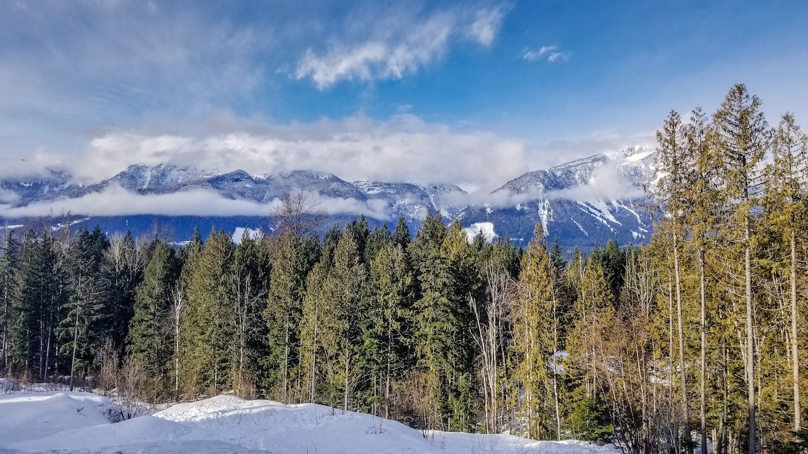 the landscape in Revelstoke, BC, Canada