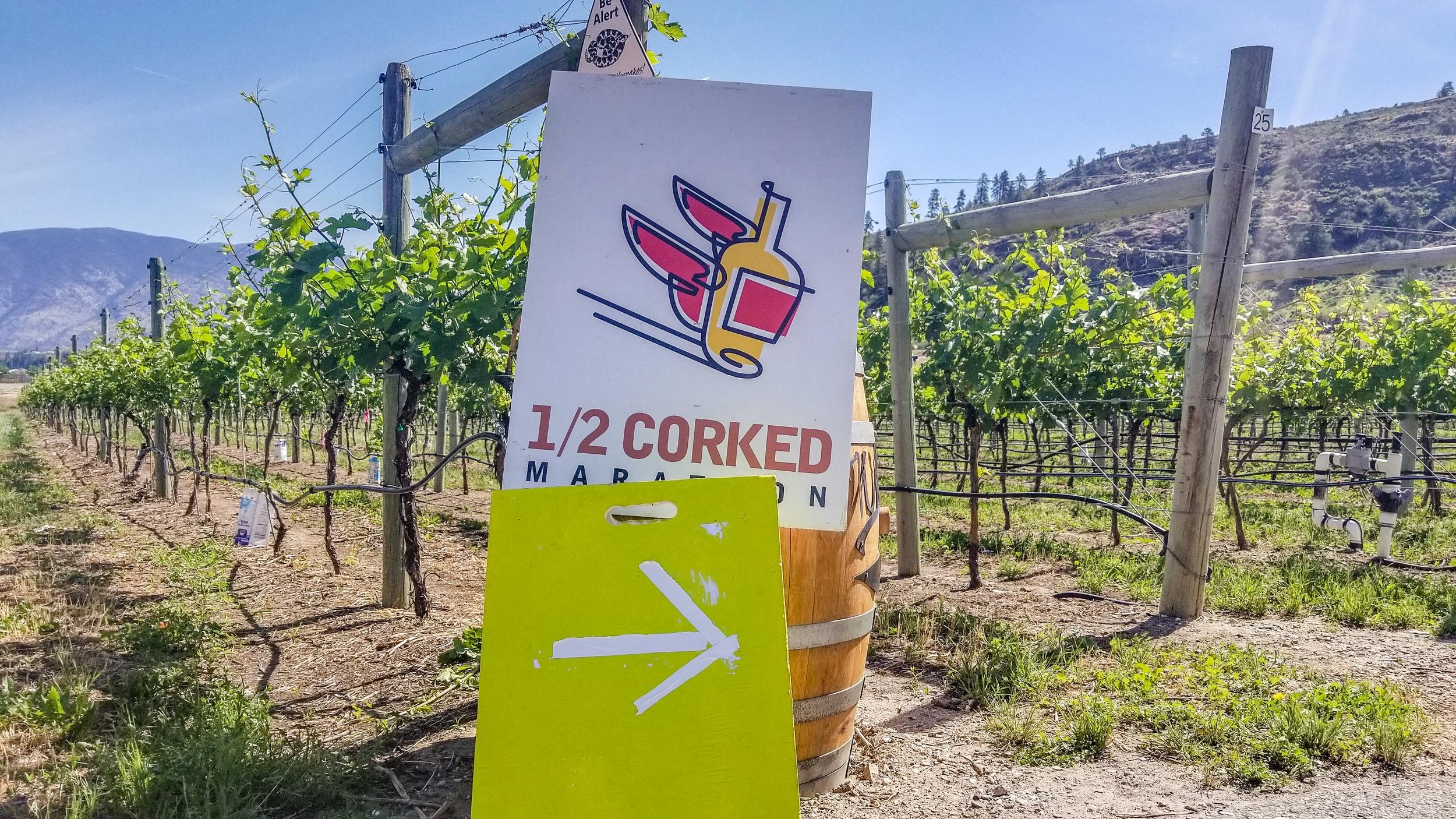 Half Corked Marathon wine run in Osoyoos, B.C.
