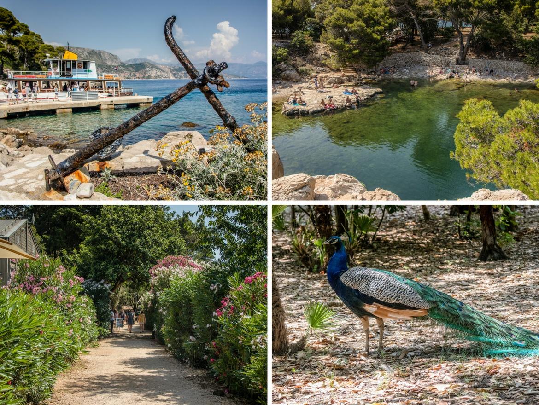 Lokrum Island. A day in Dubrovnik, Croatia itinerary