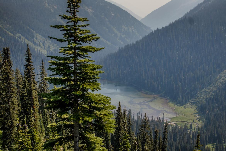 Gibson Lake in Kokanee Glacier Provincial Park