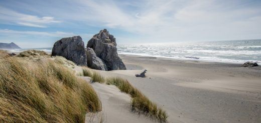 Kissing Rock, Oregon coast road trip