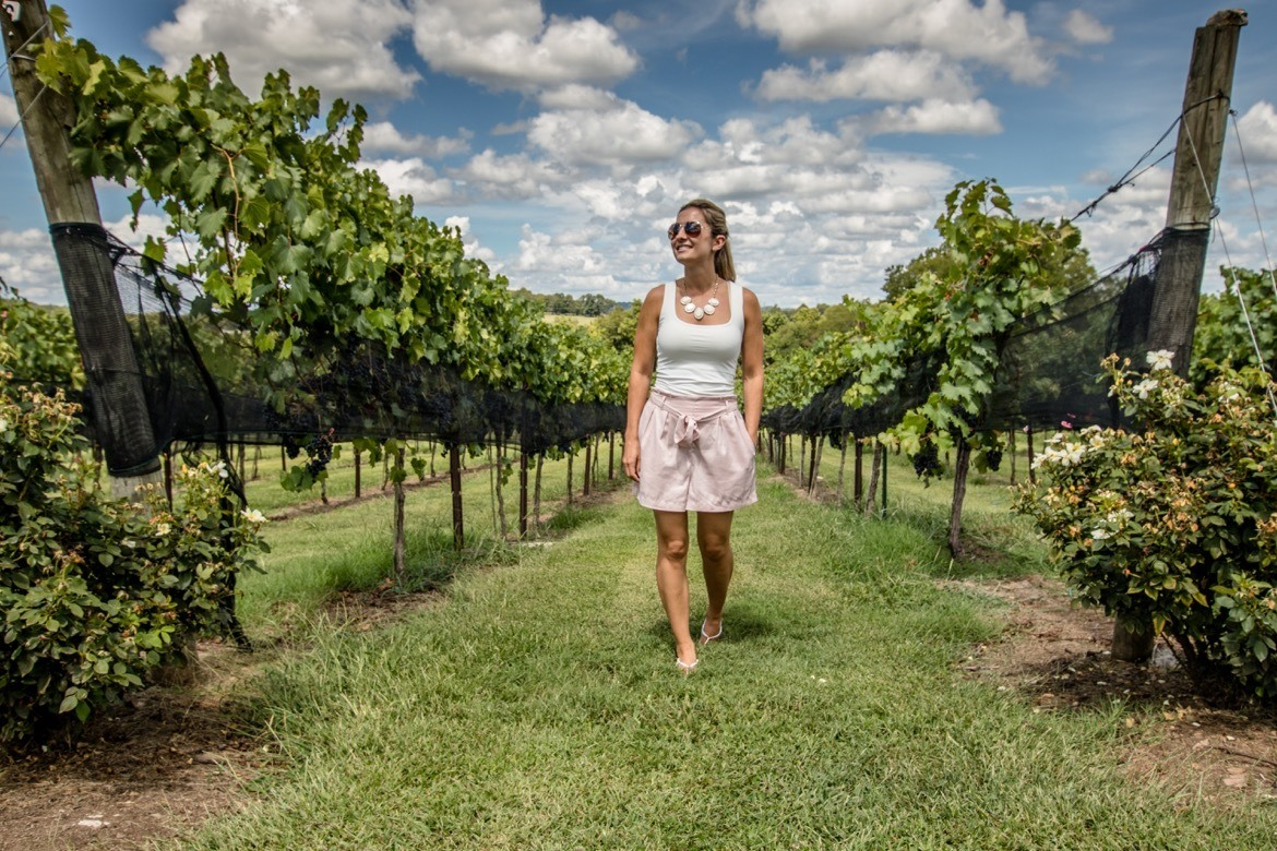Things to do in Franklin TN- Arrington Vineyards