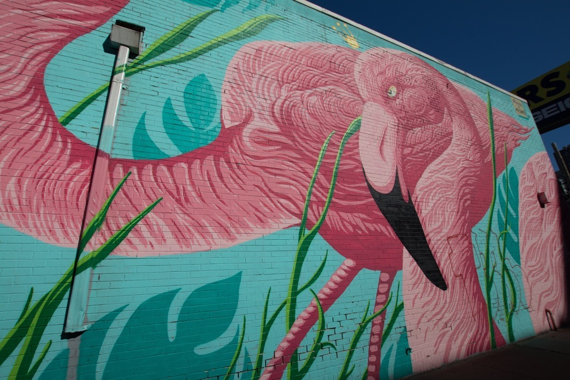 Flamingo Rum Club. The perfect two day Chicago itinerary to hit the best photography spots