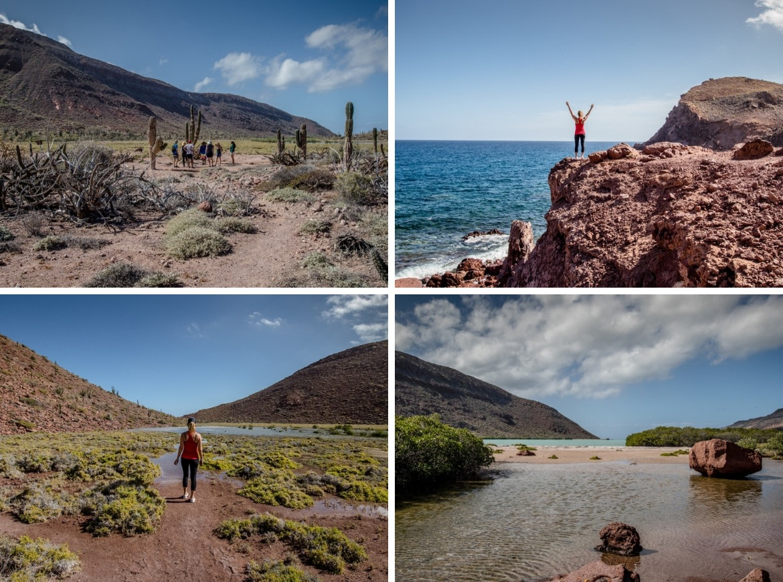 El Cardonal, Baja beaches in Baja California Sur, Mexico