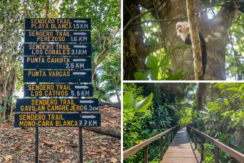 Fun things to do in Puerto Viejo, Costa Rica- Cahuita National Park