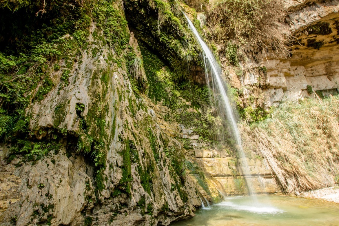 Ein Gedi Nature Reserve is one of the best day trips from Tel Aviv