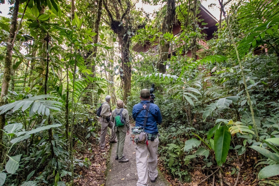 A nature tour through the Monteverde Cloud Forest Reserve is one of the best things to do in Monteverde, Costa Rica