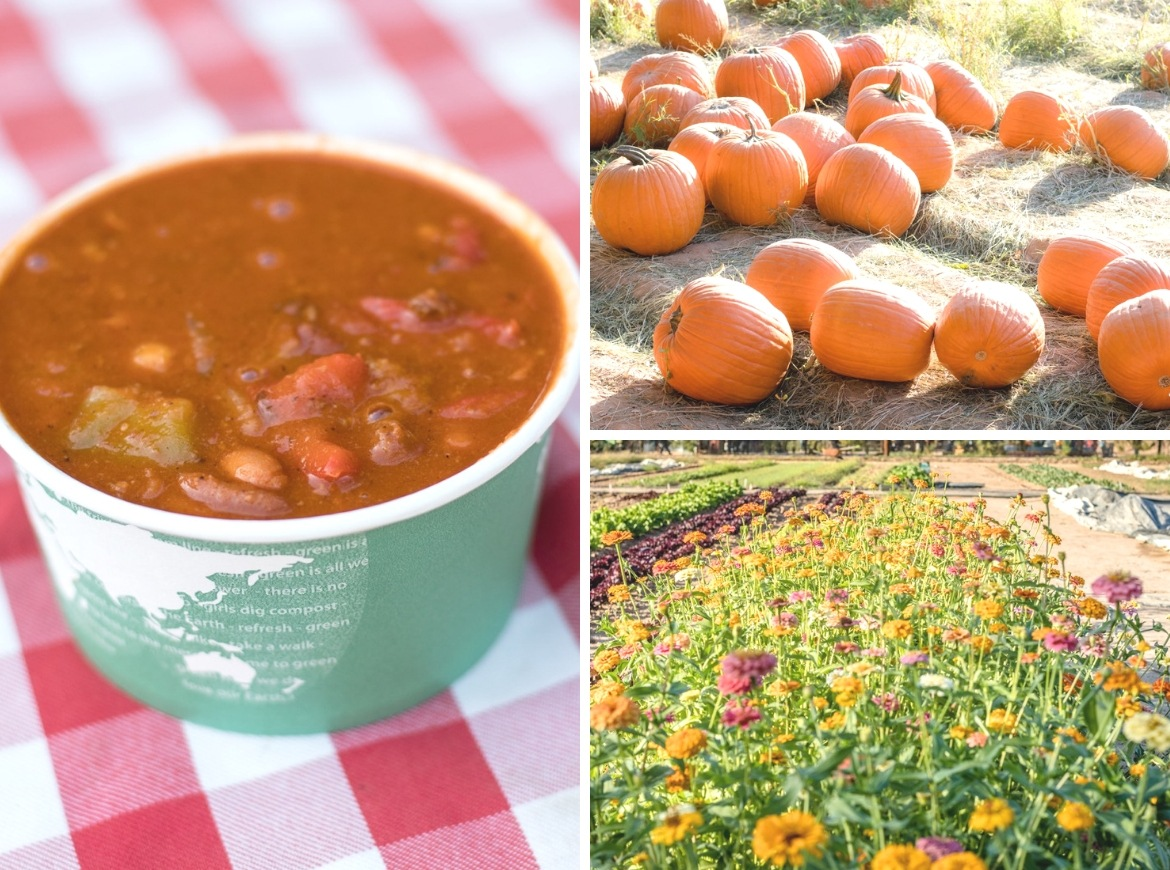 The Pumpkin & Chili Festival at Schnepf Farms