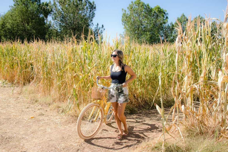 Cruiser bikes at Schnepf Farms in Arizona