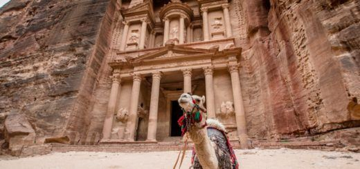 A camel in front of The Treasury in Petra, Jordan
