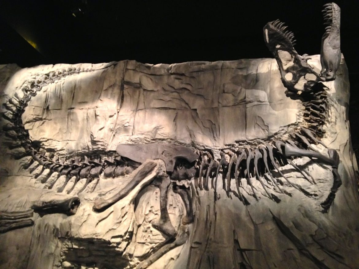 Drumheller is one of the best day trips from Calgary