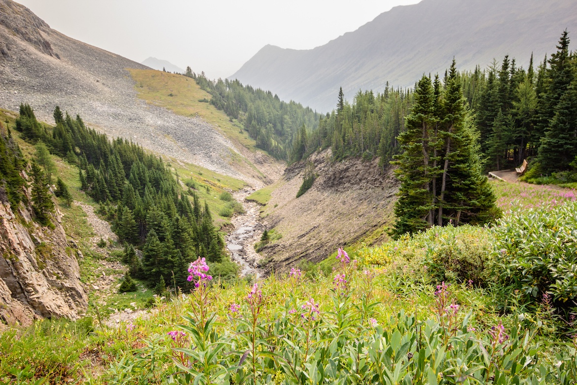 Ptarmigan Cirque is one of the best hikes in Kananaskis for families