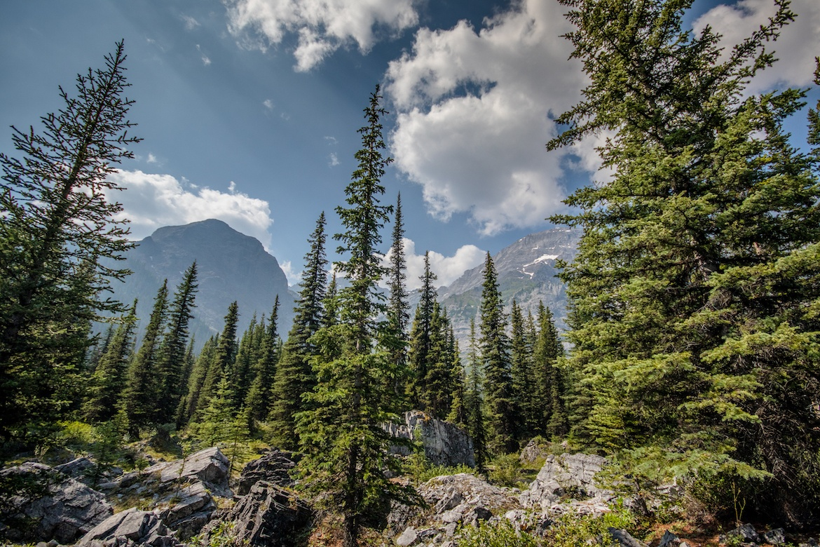 Black Prince Cirque is one of the best hikes in Kananskis
