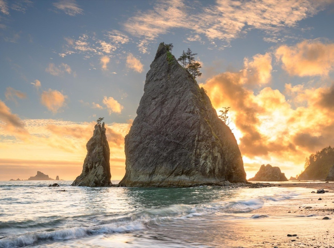 Best things to do in Olympic National Park