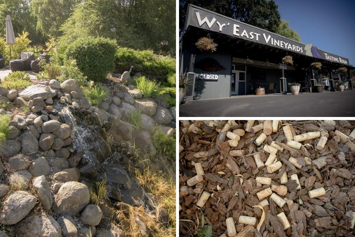 Wy'East Vineyards is one of the best Hood River wineries