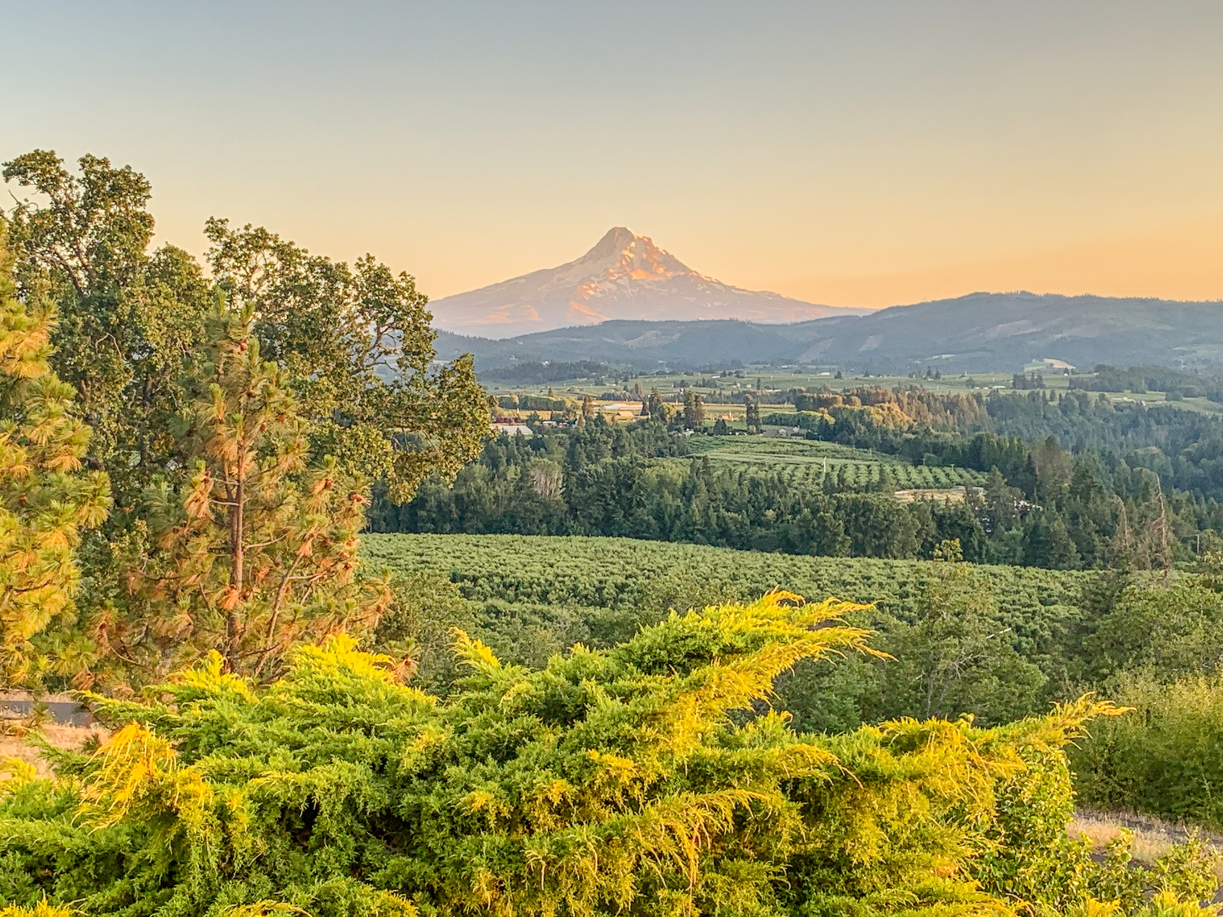 The view from Panorama Point near Hood River Oregon