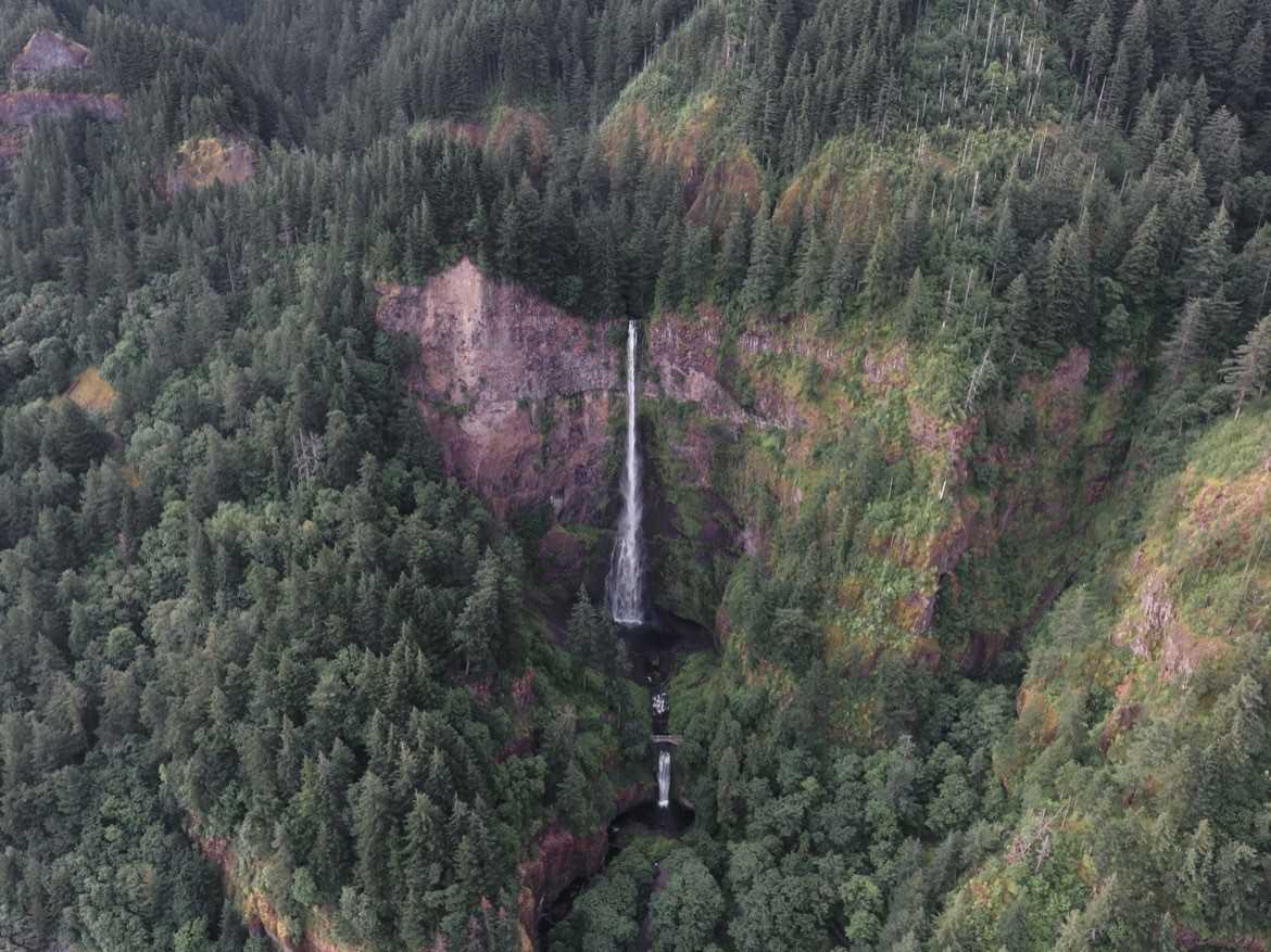 The view of Multnomah Falls during a scenic flight