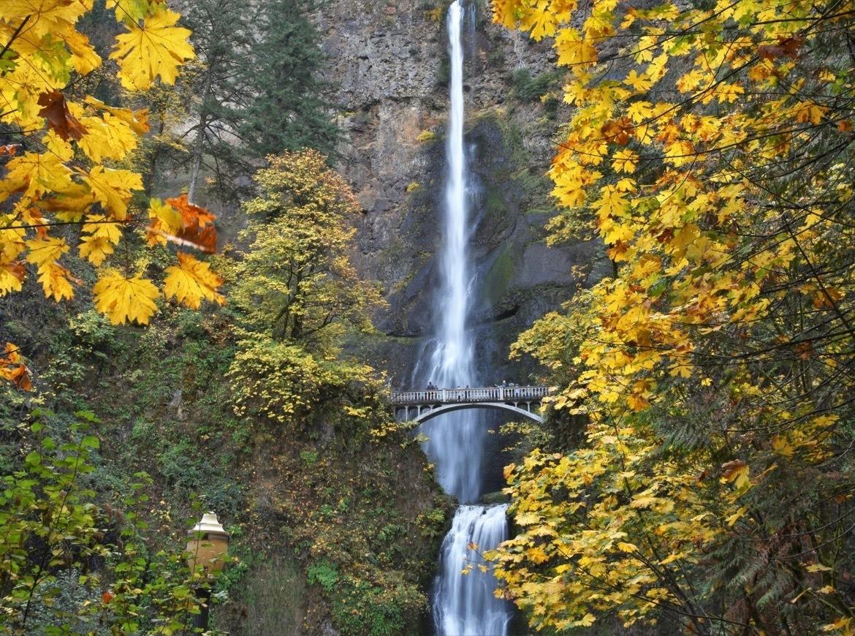 Multnomah Falls during autumn