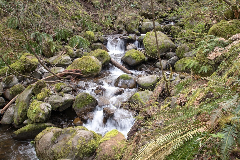 Dry Creek Falls in Oregon
