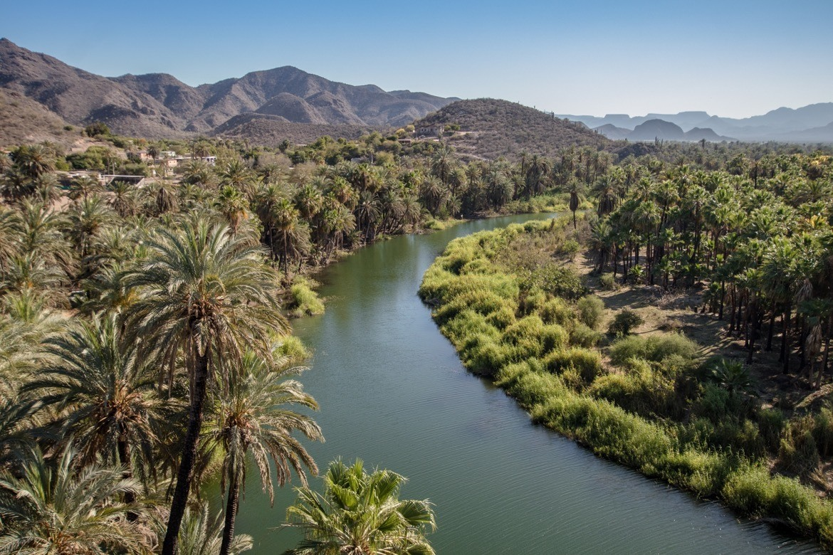 The oasis of Mulege, Mexico